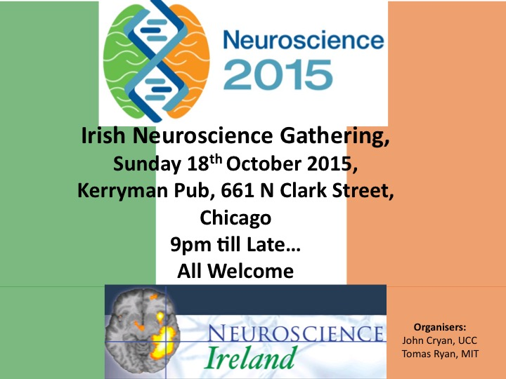 Irish Neuroscience Gathering at the SFN - Chicago 2015