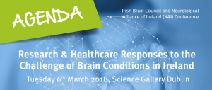 Irish Brain Council and NAI Conference
