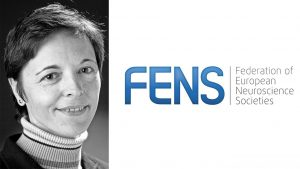 Message to NSI from the FENS President