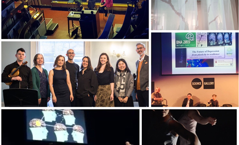 Dr Áine Kelly's review on the highly successful BNA2019 Public Programme