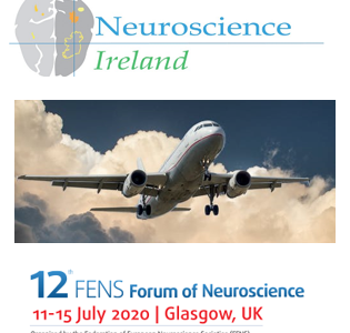 NSI Travel Bursary Awardees to attend FENS2020